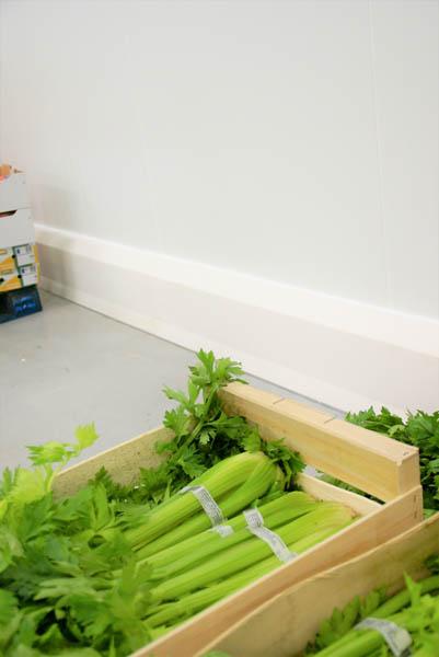 Installatie hygiënische stootranden bij verwerking fruit en groenten