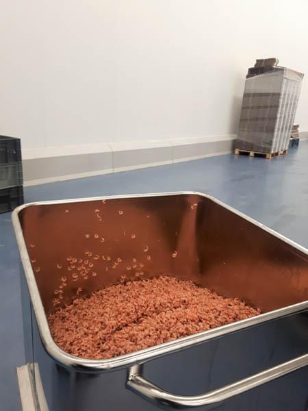Installatie van hygiënische stootranden en wanden in visverwerkend bedrijf
